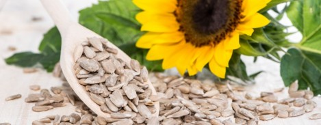 Sunflower-seeds-%E2%80%93-a-tasty-and-nourishing-snack2-950x370